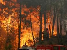Ministra da Administração renuncia após novos incêndios