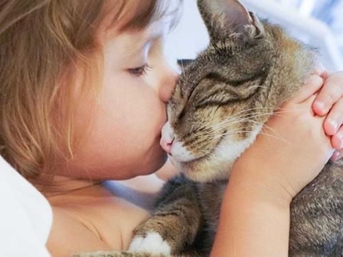 """Gatos podem ajudar a """"frear"""" asma nas crianças"""