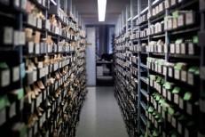 Alemanha vai encerrar buscas por 1,2 milhão de desaparecidos durante a II Guerra