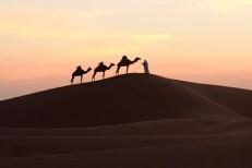 Estudo mostra que o deserto do Saara está aumentando