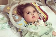 Pais do bebê Jonatas são denunciados por estelionato e apropriação