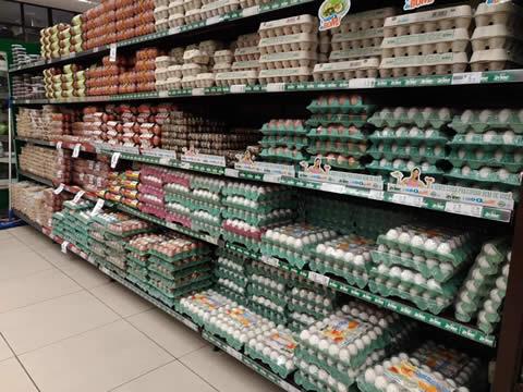 Produção de ovos de galinha no 1º trimestre bate recorde no Ceará e chega a 51 milhões de dúzias