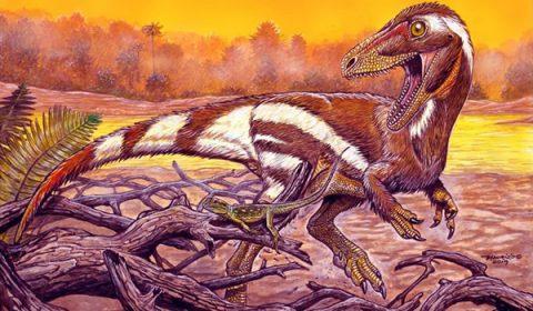 Pesquisadores descobrem espécie de dinossauro que habitou região do Cariri há 115 milhões de anos