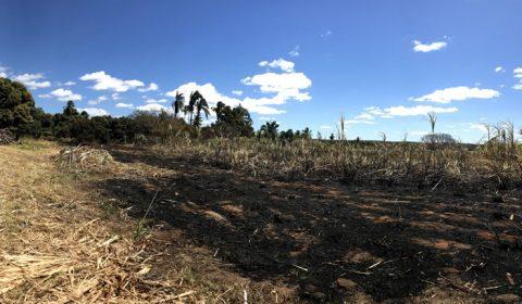 20 mil litros de álcool 70% que seriam produzidos e doados no Cariri foram consumidos por incêndio