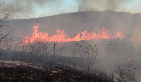 Sobral e Iguatu registram, em cinco dias, 84% do total de queimadas de julho em todo o Ceará