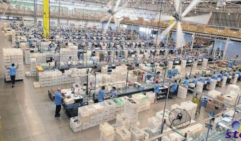 Estado trabalha para que Grendene produza marca Azaleia no Ceará