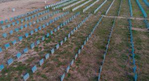 Brasil ultrapassa a marca de 500 mil mortes por Covid-19
