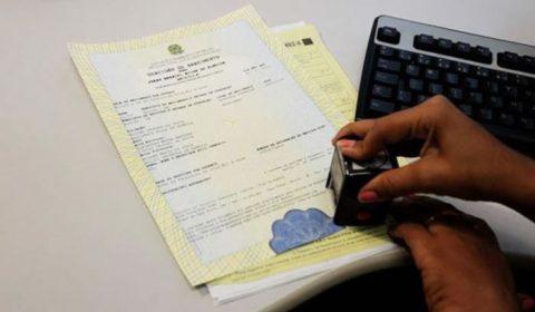 No Ceará, pedidos de retificação de nome e gênero crescem mais de 700% em cinco anos